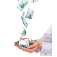 Bancile indeamna clientii sa economiseasca in euro