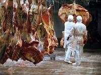 Scrisoare deschisa catre Parlament: Se cere reducerea TVA la carne
