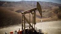 Se va prabusi si mai mult pretul petrolului?