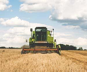 Creditul de investiții în agricultură, o soluție la îndemână pentru extinderea fermei tale