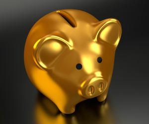 Cum economisesti rapid bani. Trucuri usor de pus in aplicare