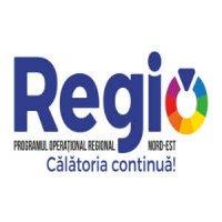 Dezvoltarea urbana sustenabila - misiune indeplinita cu REGIO