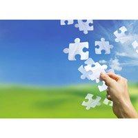 Top 10 oportunitati de afaceri in 2012