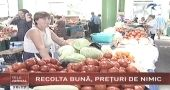 Intermediarii din agricultura aduc producatorii in faliment
